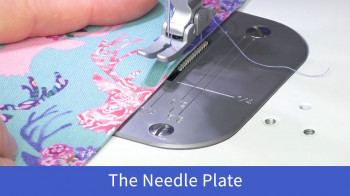 Accomplish_The-Needle-Plate.jpg